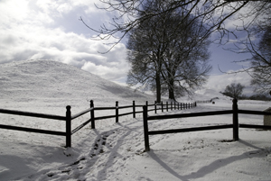 Photograph of Winter Landscape with Snow