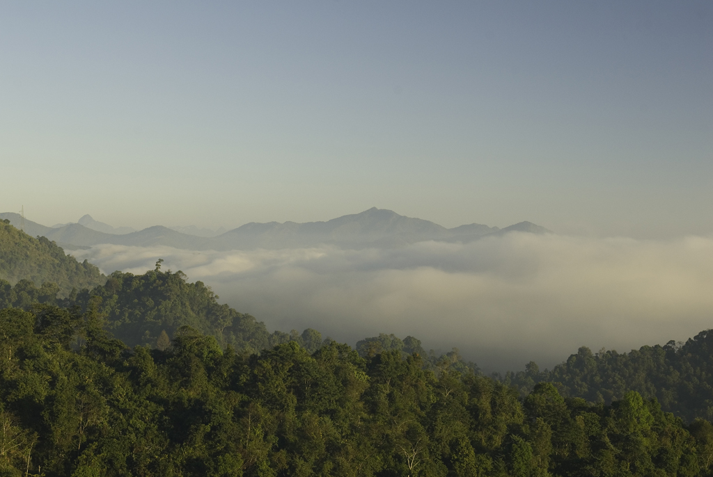 Morning mists over mountains by Phou Khoun